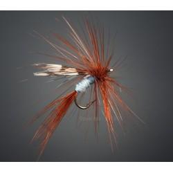 BG flue type 22