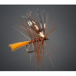 BG flue type 29