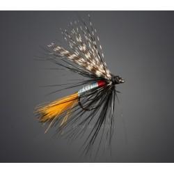 BG flue type 30