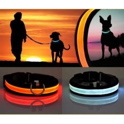LED Hundehalsbånd med lys