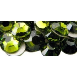 100 stk SS20 Olive